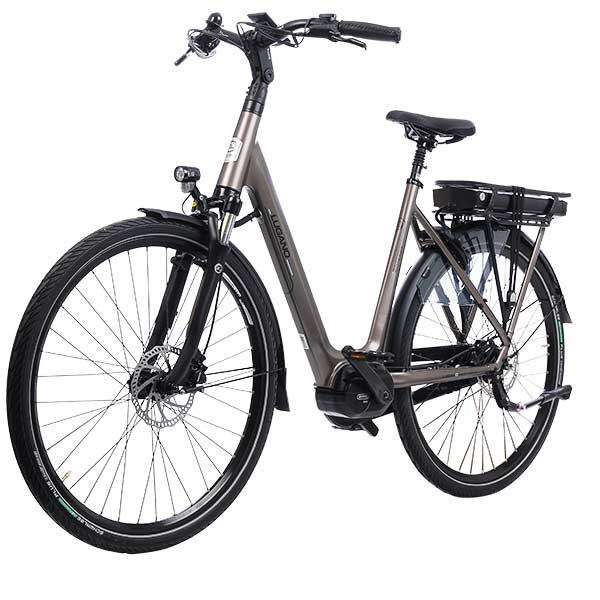 Lugano dutch e-bikes damesframe